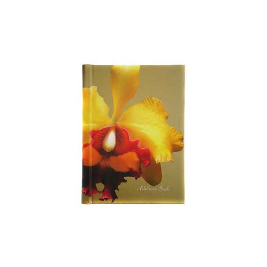 CATTLEYA IN GOLD1