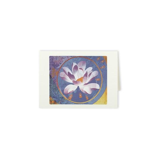 Delighting Lotus
