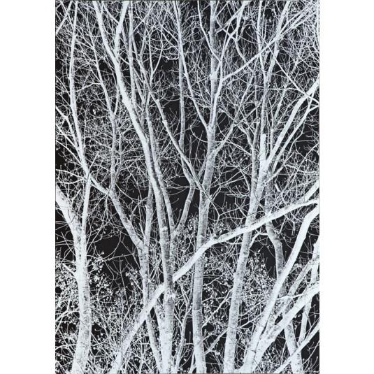 Tree in Black
