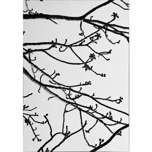 Nature Lines 7