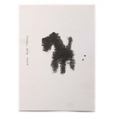 Kerry Bull  Terrier