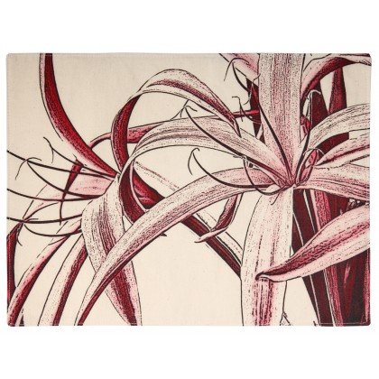 Spider Lily / Red