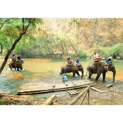 ELEPHANT TRAINING CAMP AT CHAING DAO
