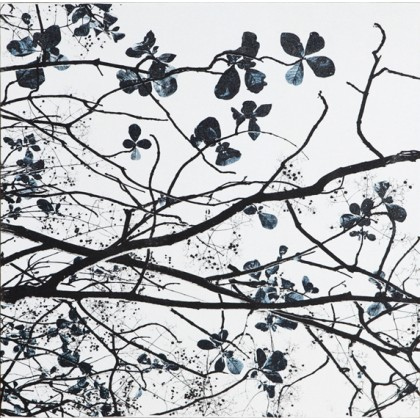 Nature's Lines 2 / blue